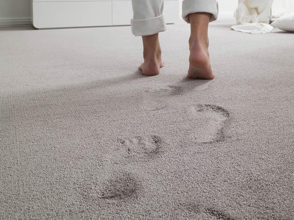 moquette pavimenti tessile cadore belluno friuli